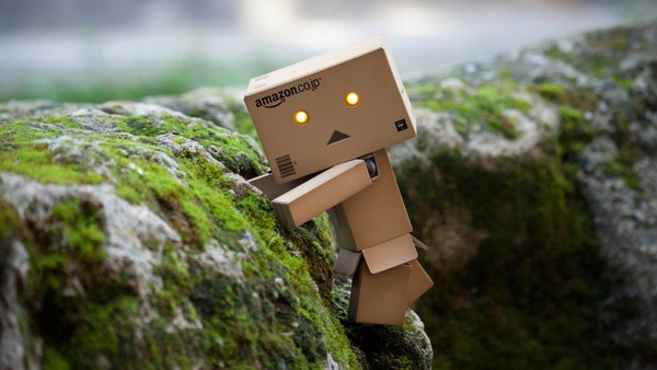 1.-Amazon-Danbo (1)