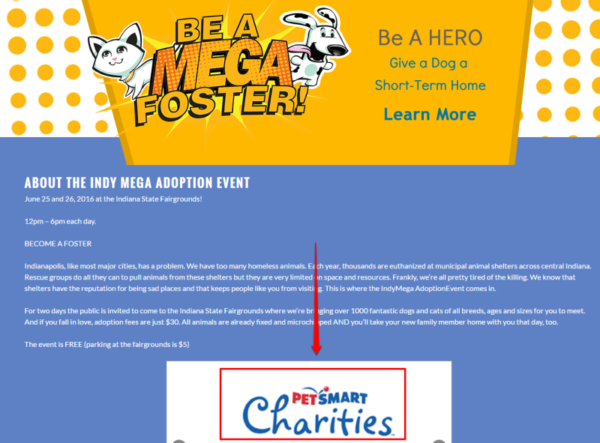 Charity1-with-box-1-800x591